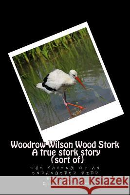 Woodrow Wilson Woodstork a True Stork Story (Sort Of): The Saving of an Endangered Bird Mrs Karen Baer Aiken MR Roy Sabean 9781515286714