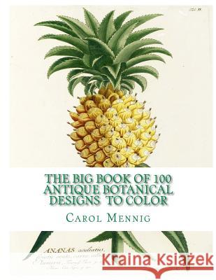 The Big Book of 100 Botanical Designs to Color Carol Elizabeth Mennig 9781517193256