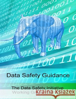 Data Safety Guidance The Data Safety Initiative Working Group MR Paul Hampton 9781519533579