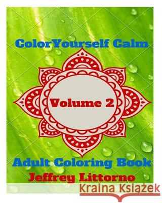 Color Yourself Calm, Volume 2: Adult Coloring Book Jeffrey Littorno 9781522756064