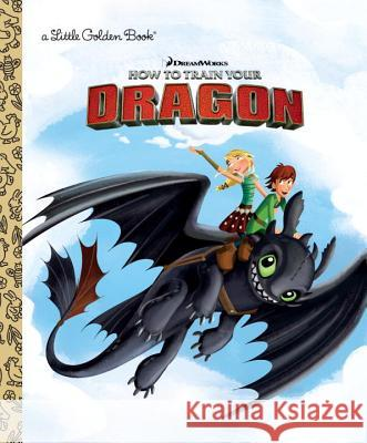 DreamWorks How to Train Your Dragon Finley Shawn 9781524767747