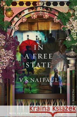In a Free State V. S. Naipaul   9781529014051