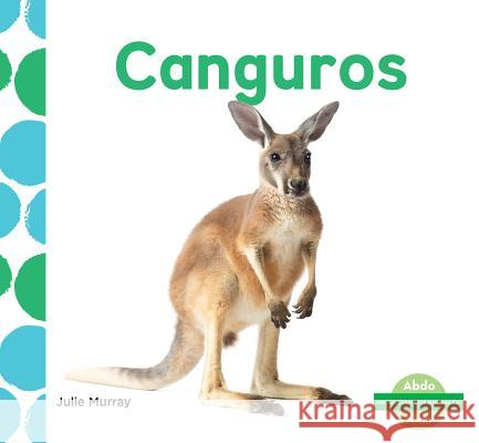 Canguros (Kangaroos) (Spanish Version) Julie Murray 9781532101816