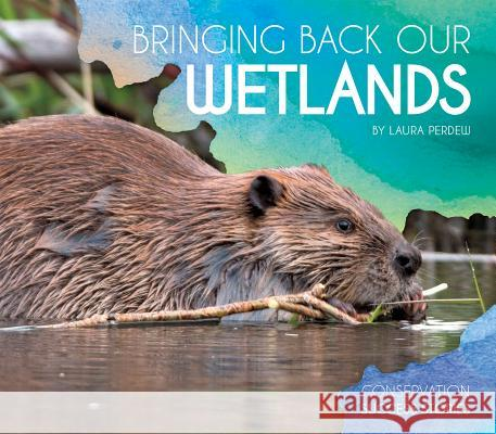 Bringing Back Our Wetlands Laura Perdew 9781532113185 Essential Library