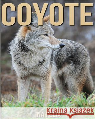 Coyote: Children Book of Fun Facts & Amazing Photos on Animals in Nature - A Wonderful Coyote Book for Kids Aged 3-7 Ina Felix 9781532716294