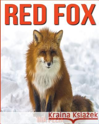 Red Fox: Children Book of Fun Facts & Amazing Photos on Animals in Nature - A Wonderful Red Fox Book for Kids Aged 3-7 Ina Felix 9781532774188