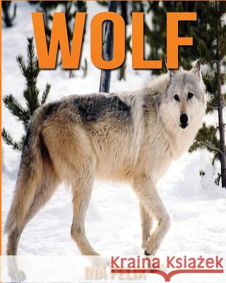 Wolf: Children Book of Fun Facts & Amazing Photos on Animals in Nature - A Wonderful Wolf Book for Kids Aged 3-7 Ina Felix 9781532799679