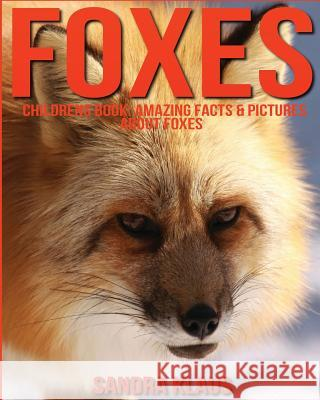 Childrens Book: Amazing Facts & Pictures about Foxes Sandra Klaus 9781532869891