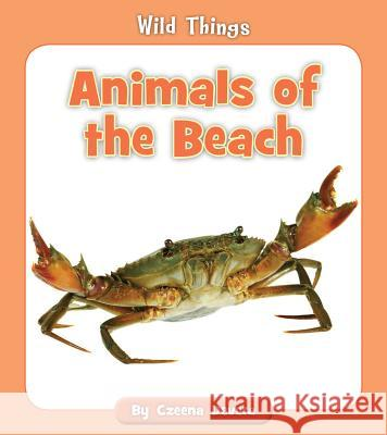 Animals of the Beach Czeena Devera 9781534149823