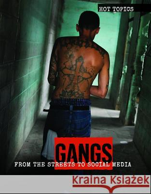 Gangs: From the Streets to Social Media Anna Collins 9781534566972