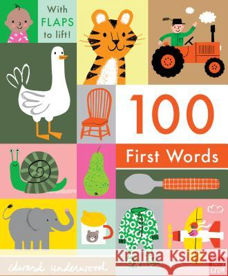 100 First Words Nosy Crow                                Edward Underwood 9781536208221