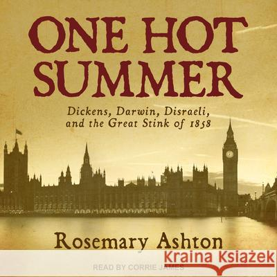 One Hot Summer: Dickens, Darwin, Disraeli, and the Great Stink of 1858 - audiobook Rosemary Ashton Corrie James 9781541459724