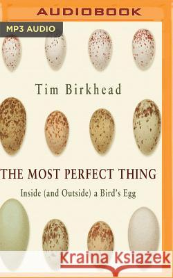 The Most Perfect Thing Tim Birkhead Gareth Armstrong 9781543625363