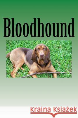 Bloodhound: journal / notebook Wild Pages Press 9781546650829