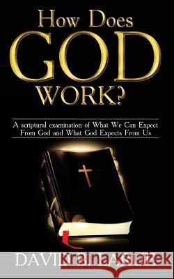 How Does God Work?: A Scriptural Examination of What We Can Expect from God and What He Expects from Us David B. Larue 9781548591830
