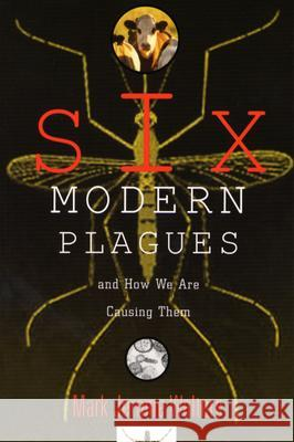Six Modern Plagues and How We Are Causing Them : And How We Are Causing Them Mark Jerome Walters 9781559637145
