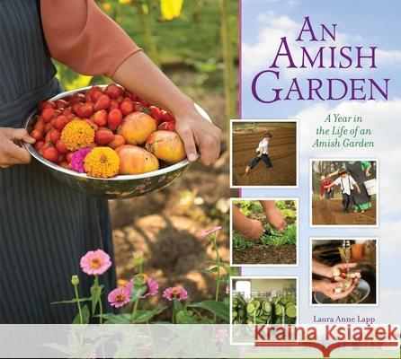 An Amish Garden: A Year in the Life of an Amish Garden Laura A. Lapp 9781561487929