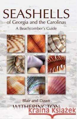 Seashells of Georgia and the Carolinas: A Beachcomber's Guide Blair E. Witherington 9781561644971