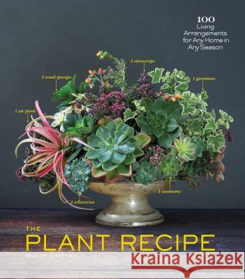 The Plant Recipe Book: 100 Living Arrangements for Any Home in Any Season Baylor Chapman 9781579655518