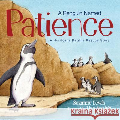 A Penguin Named Patience: A Hurricane Katrina Rescue Story Suzanne Lewis Lisa Anchin 9781585368402