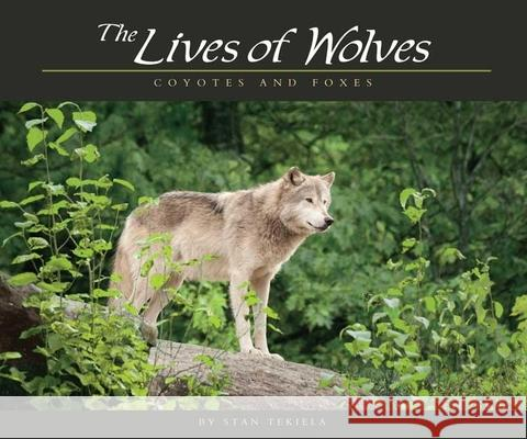 Lives of Wolves, Coyotes and Foxes Stan Tekiela 9781591932765