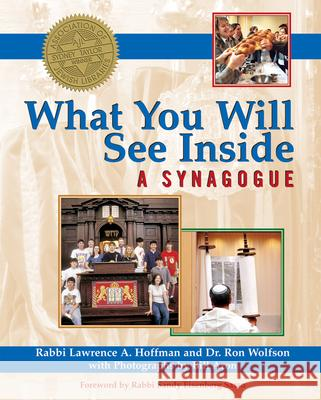 What You Will See Inside a Synagogue Lawrence A. Hoffman Ron Wolfson Bill Aron 9781594732560
