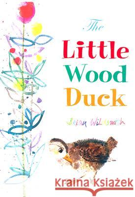 The Little Wood Duck Brian Wildsmith 9781595720429