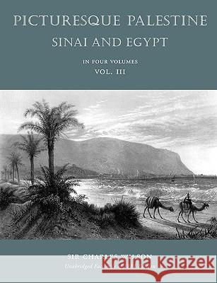 Picturesque Palestine : Sinai and Egypt: Volume III Charles Wilson 9781597314589