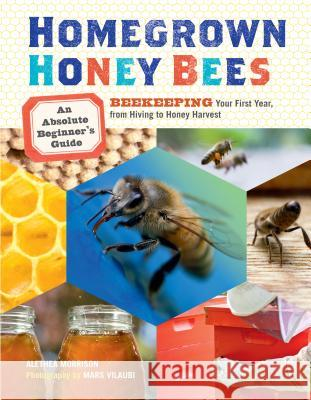 Homegrown Honey Bees: An Absolute Beginner's Guide to Beekeeping Your First Year, from Hiving to Honey Harvest Alethea Morrison 9781603429948