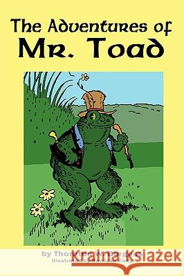 The Adventures of Old Mr. Toad Thornton W. Burgess Harrison Cady 9781604597554 Flying Chipmunk Publishing