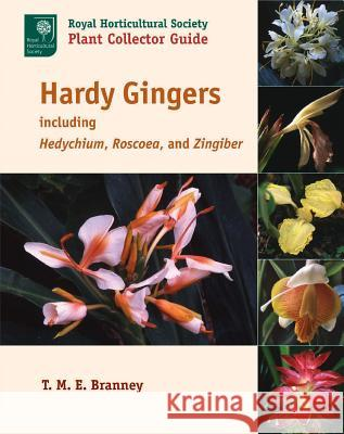 Hardy Gingers, Including Hedychium, Roscoea, and Zingiber T. M. E. Branney Tony Schilling 9781604691733