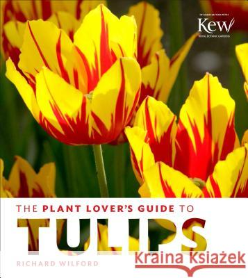 The Plant Lover's Guide to Tulips Richard Wilford 9781604695342