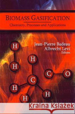 Biomass Gasification : Chemistry, Processes & Applications  9781607414612