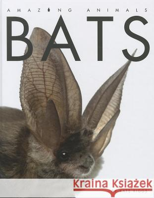 Bats Kate Riggs 9781608181056 Creative Education