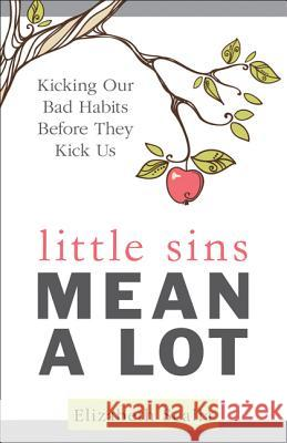 Little Sins Mean a Lot: Kicking Our Bads Habits Before They Kick Us Elizabeth Scalia 9781612789040