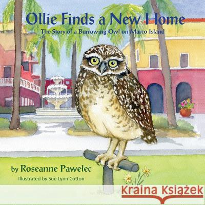 Ollie Finds a New Home, the Story of a Burrowing Owl on Marco Island Roseanne Pawelec Sue Lynn Cotton 9781614933830