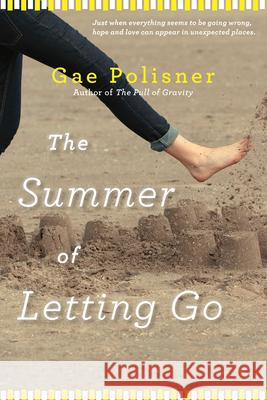 The Summer of Letting Go Gae Polisner 9781616204808 Algonquin Books of Chapel Hill
