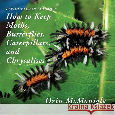 Lepidopteran Zoology: How to Keep Moths, Butterflies, Caterpillars, and Chrysalises Orin McMonigle 9781616464684