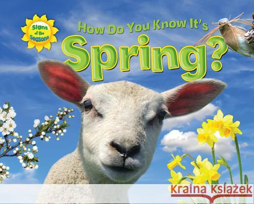 How Do You Know It's Spring? Ruth Owen   9781617723988 Bearport Publishing