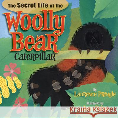 The Secret Life of the Woolly Bear Caterpillar Laurence Pringle Joan Paley 9781620910009