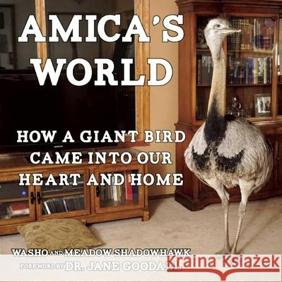 Amica's World: How a Giant Bird Came Into Our Heart and Home Meadow Shadowhawk Washo Shadowhawk Jane Goodall 9781621062820 Microcosm Publishing