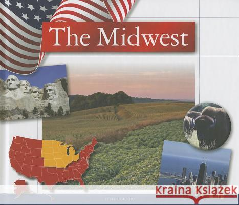 The Midwest Rebecca Felix 9781623234911