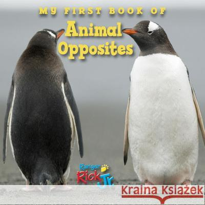 My First Book of Animal Opposites National Wildlife Federation 9781623540623