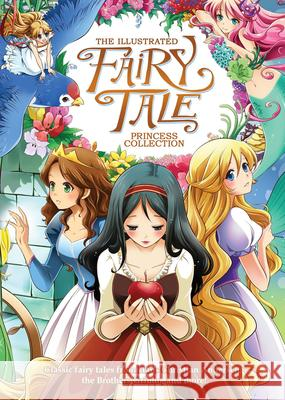 The Illustrated Fairy Tale Princess Collection Shiei 9781626924888