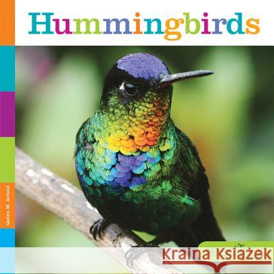 Hummingbirds Quinn M. Arnold 9781628323337 Creative Paperbacks