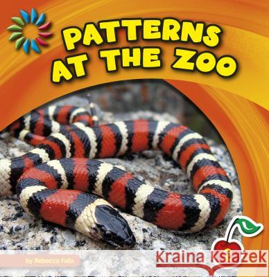 Patterns at the Zoo Rebecca Felix 9781631889196