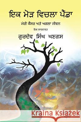 Journey Through a Turning Point: Punjabi Edition Gurdev S. Ghangas 9781634988353