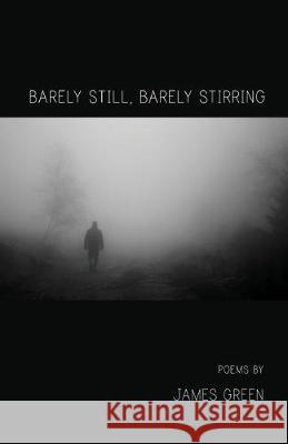 Barely Still, Barely Stirring James Green 9781646620371 Finishing Line Press