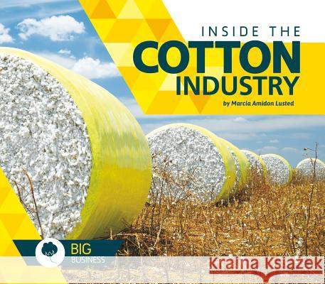 Inside the Cotton Industry Marcia Amidon Lusted 9781680783704