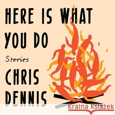 Here Is What You Do: Stories - audiobook  9781684418497